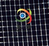 厂家供应透明PVC夹网布 大方格夹网布 彩色透明夹网布 箱包面料