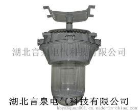 BZD125-L150x增安型防爆灯