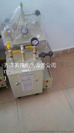深圳中邦50公斤电热气化炉