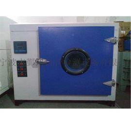 电热鼓风干燥箱/恒温干燥箱/工业烤箱厂家