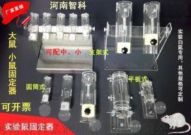 大小鼠固定器,平板固定器,圆筒固定器
