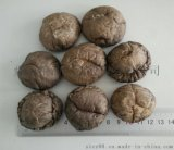 dried smooth shitake mushroom 光面菇厂家大量供应干香菇批发