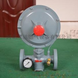 直销 鼎丰公司生产楼栋调压器 过滤器 紧急切断阀、安全放散阀分离器CNG和LNG等