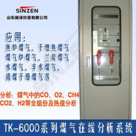 TK-6000型煤气发生炉氧含量分析系统