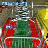 绥化新型养殖母猪产床保育床两用型猪床产保一体床