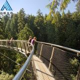 装饰楼梯用不锈钢绳网 鸟语林围网 不锈钢绳网网兜