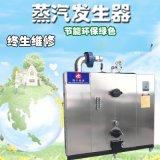 生物質顆粒蒸汽發生器 雙燃料做豆腐配套環保鍋爐
