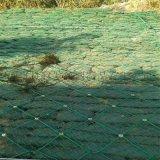 边坡绿化网@边坡植物绿化网@边坡绿化防护网