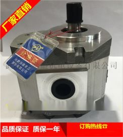 合肥长源液压齿轮泵CBHT-F2516-CFZ(右法兰)
