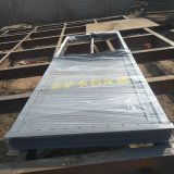 優質閘門 污水鋼製閘門 機閘一體污水閘門