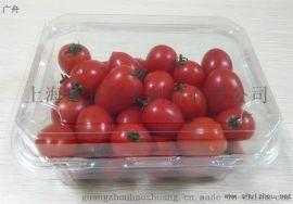 一次性蔬菜包装盒、透明水果包装盒价格 广舟包装专业设计定制果蔬包装盒