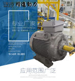 IE4欧洲超高效标准电动机 Virya品牌