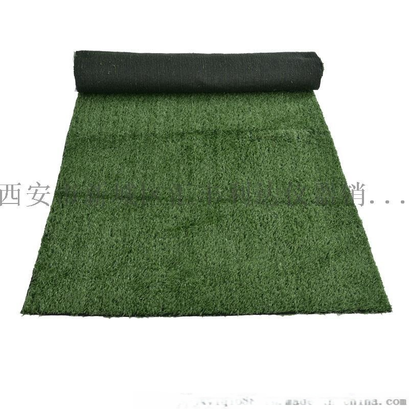 西安哪余有賣草坪人造草坪18992812668