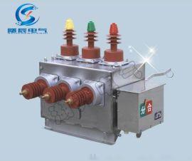 ZW10-12戶外高壓真空斷路器雙電源型