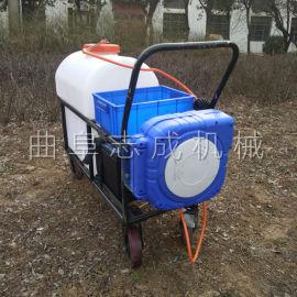 新款电动推车打药机大棚蔬菜蓄电池喷雾器