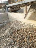 鄭州天然鵝卵石廠家現貨供應