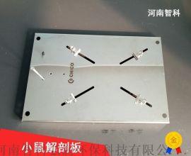 不鏽鋼小鼠解剖板智科儀器