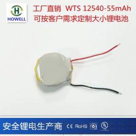鸿伟能源12540 电池55mAhWTS蓝牙电池