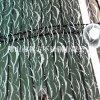 南寧 不鏽鋼工藝板 鍍鈦褪色 雙向拉絲板材供應