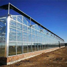 玻璃暖棚,玻璃連棟大棚建設