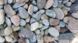 山东景观鹅卵石 永顺园林鹅卵石报价