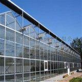 玻璃温室厂家 玻璃温室造价 温室大棚工程