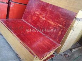 建筑模板 红板 松桉红板  木模板