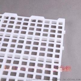 广东家禽漏粪板 塑料漏粪板厂家 鸡鸭鹅漏粪地板厂家