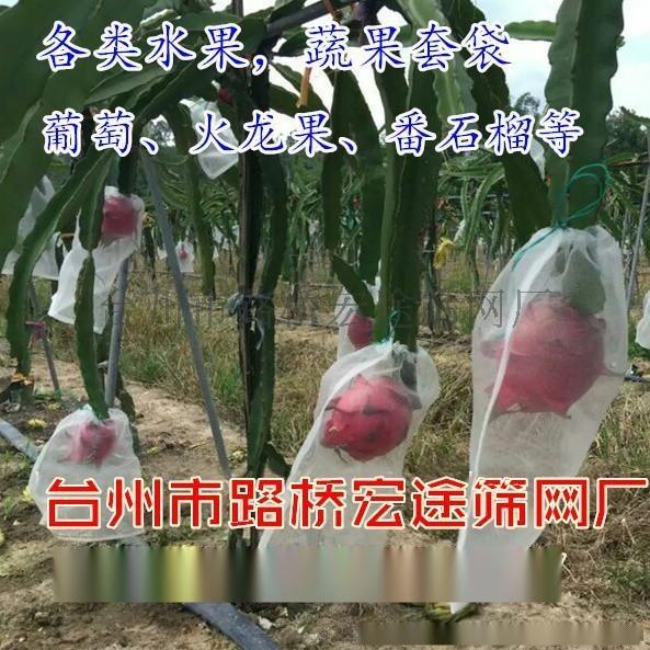 生產供應防蟲網袋、黑色火龍果尼龍種子袋 種子袋 火龍果套袋防蟲袋 種子袋 尼龍網袋