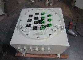 BXK51防爆电气控制柜IIC