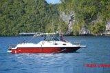 敞開式旅遊快艇省油速度快遊釣艇專業船廠