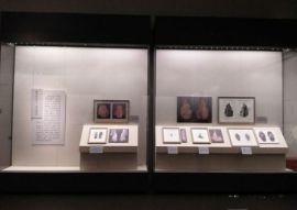 广州大学图书馆展柜厂家-校史文化博物馆展柜生产