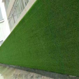 河南人造草坪 地面铺装人工草皮 围挡草坪安装