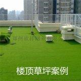 郑州人造草坪厂家 屋顶绿化人造草坪现货供应
