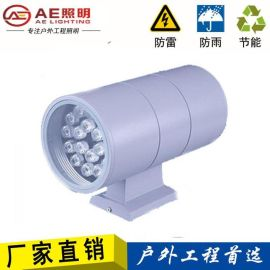 AE照明AE-BD-01双头壁灯,防水投射灯,外墙壁灯,AE照明户外灯36W24w18W12w9W6W双头外墙壁灯防水
