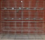 商品兔笼 小兔笼 育肥兔笼 獭兔笼