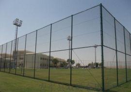 专业供应体育场围栏围网¥镀锌铁丝勾花网围栏厂家