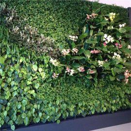 新雯仿真植物墙 仿真花墙背景装饰 仿真绿色植物墙 厂家批发