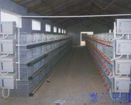 养鸡全自动上料机层叠式喂料机梯形喂料机