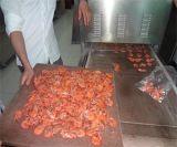 扇贝对虾烘烤机器价格.整机双层不锈钢