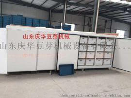 庆华无公害家用豆芽机 花生芽机器 振动去壳机 芽苗机