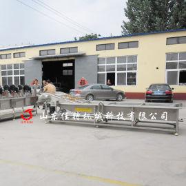 洛阳蔬菜清洗生产线 蔬菜加工生产线厂家