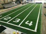廠家供應健身房地墊功能地膠塑膠地板PVC運動地板