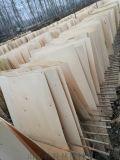 山东胶合板加工厂家多层包装板家具板厂家