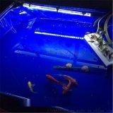 水池養殖魚池 養魚帆布池 摺疊游泳池定做廠家