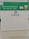 玻纤棉硅酸钙吸音板 定制岩棉硅酸钙板20厚