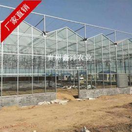 玻璃温室 玻璃温室工程 玻璃大棚 智能玻璃温室