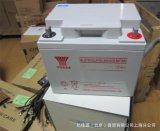 YUASA汤浅NP38-12 12V38AH铅酸免维护UPS/EPS电源直流屏蓄电池