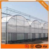 钢结构简易温室 薄膜连栋温室大棚