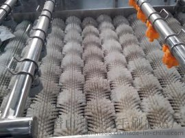 毛刷热 除皮机毛刷辊 清洗机毛刷辊 尼龙丝毛刷辊